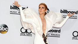 Zpěvačka Céline Dion (49) v Las Vegas