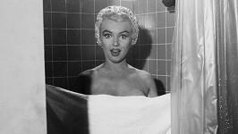Ve filmu Niagara (1953) si Marilyn střihla i slavnou koupací scénu.