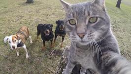 Lepší selfie nikde nenajdete!