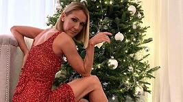 Céline Dion a další hvězdy se pochlubily vánočními stromky.