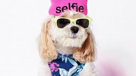 Fenomén selfie nešlo přejít bez povšimnutí...