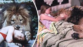 Rodina Melanie Griffith si z Afriky přivezla lva.