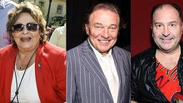 Jiřina Bohdalová, Karel Gott a Michal David patří mezi celebrity, nad jejichž domovy se konají vyhlídkové lety.