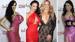 Barvám a výstřihům se na předávání AVN Awards meze nekladly.