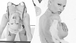 Pamela Anderson pro organizaci PETA.
