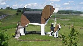 psí hotel