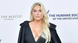 Zpěvačka Kesha vyrazila na galavečer v černé róbě.