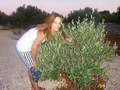 Klára pěstuje olivovníky an domácí olej.