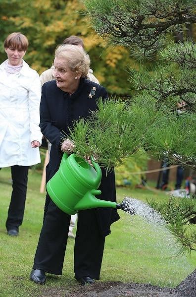 Obří bonsaj bylo potřeba zalít.