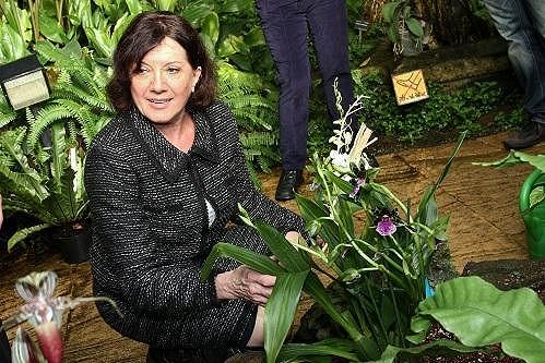 Rottrová uvazovala orchidej v botanické zahradě v pražské Tróji.