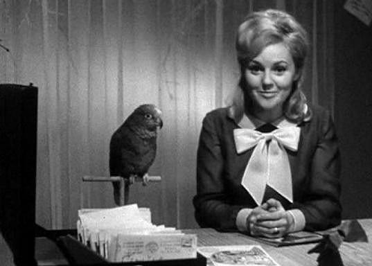 Uváděla například dětský pořad Lorinka a čertík Bertík (1968)