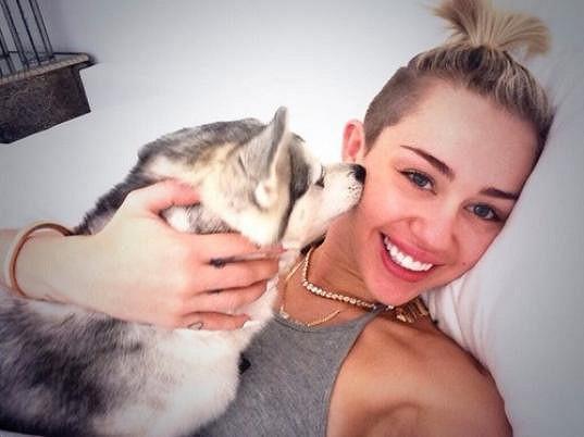 Miley se kromě pejsků už nejspíš tulí i k dědici magazínu Rolling Stone.