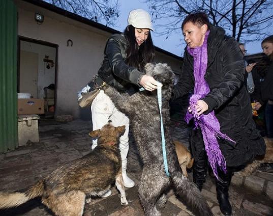 Sandru nechtěl obrovský pes ani pustit.