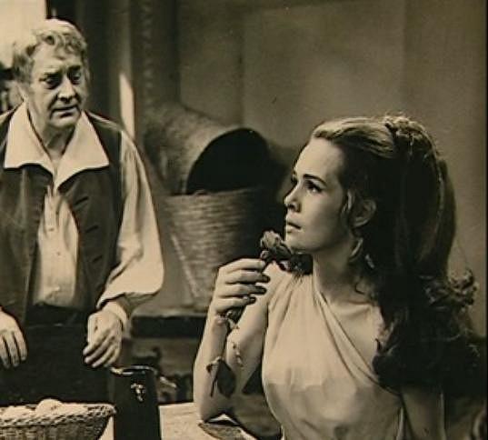 Šulcová patřila k našim nejžádanějším herečkám.