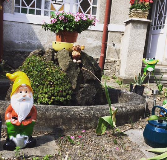 Hruška by chtěl oslavit další Vánoce v opraveném domě.