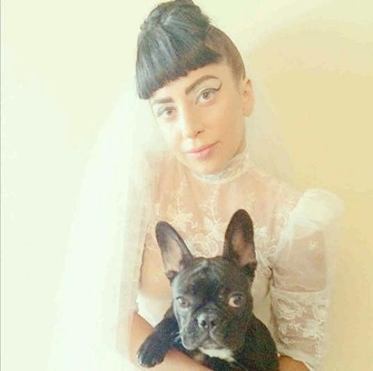 Lady Gaga a její fenka Asia