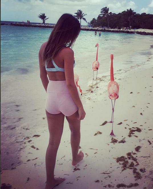 Setkání na pláži s plameňáky