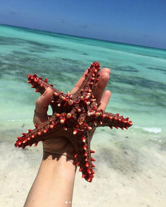 Zanzibar je doslova rájem na zemi.