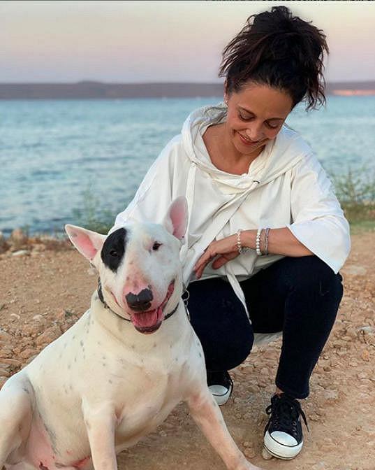 Páru dělá společnost pes Kvído. Právě kvůli němu je cílem jejich dovolené Chorvatsko. Místo, kam dojedou autem.