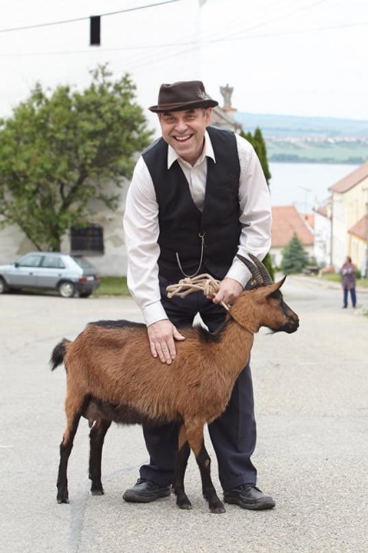Seriál Táborskému odepřel manželku, ale dočkal se kozy.