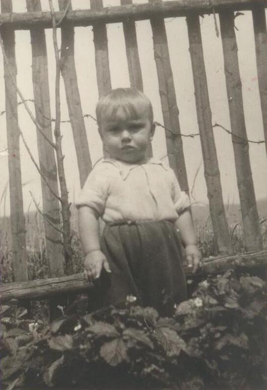 Malý Jaroslav přistižen fotografem v jahodách.
