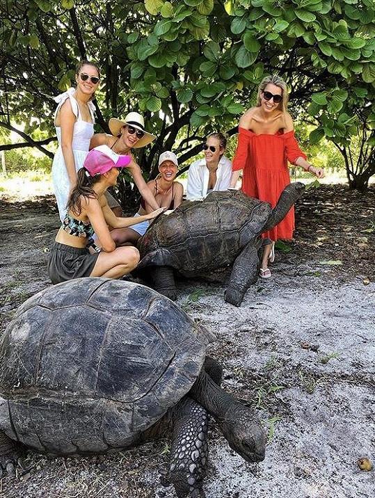 Nadšené byly z obřích želv.