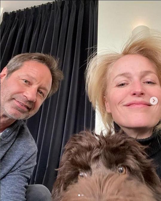 Gillian Anderson a David Duchovny potěšili fanoušky společným selfie.