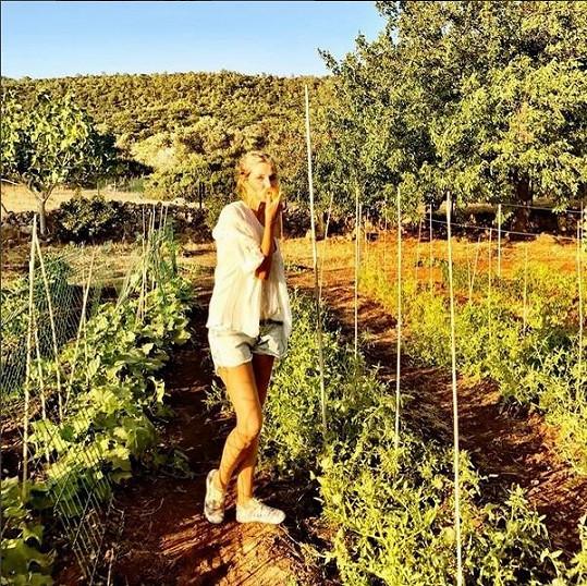 V úrodné krajině může ochutnávat rajčata rovnou z keříků.