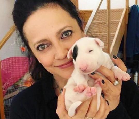 Lucie Bílá si pořídila psího kamaráda.