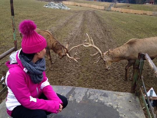 Z jelenů byla Gábina unešená.