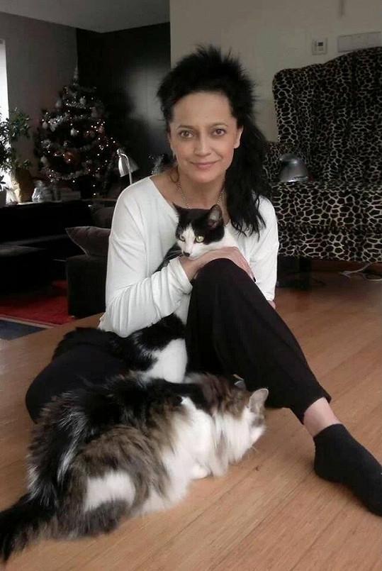 Lucka Bílá v obležení kočiček.