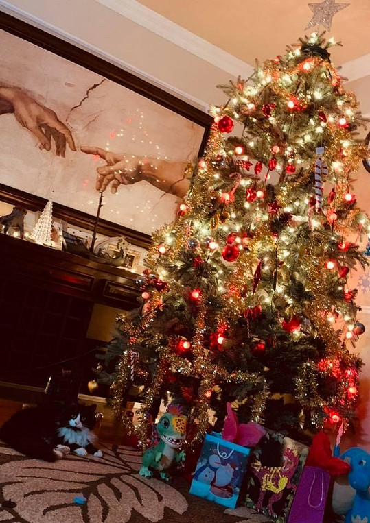 Vánoční stromeček s dárečky hlídá Lucčina kočička.