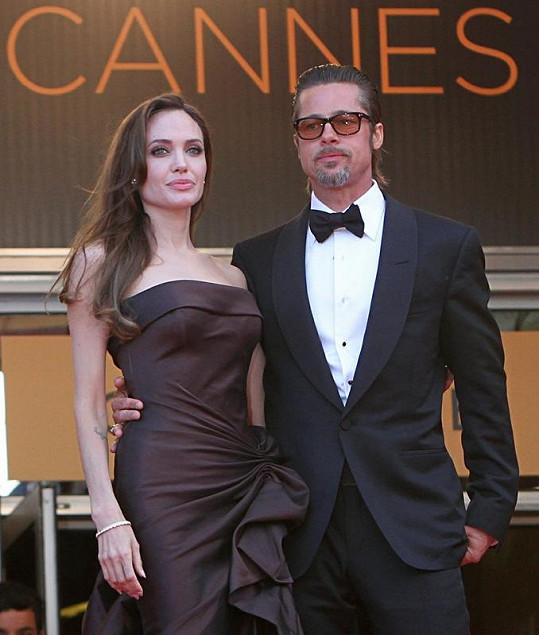 Brad Pitt v Cannes propagovat svůj nejnovější film Strom života.