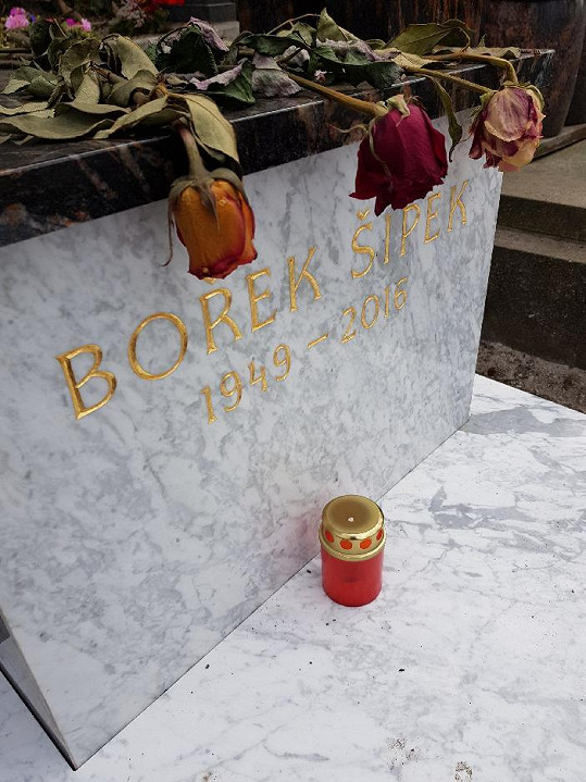 Bořek Šípek zemřel před dvěma lety po statečném boji s rakovinou slinivky břišní.