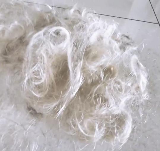 Vlasů po něm na podlaze kadeřnictví zůstala pěkná hromádka.