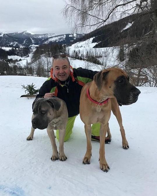S novou partnerkou ho spojuje láska k psům.