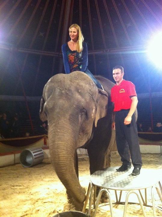 Ivana si vyzkoušela jízdu na slonovi.
