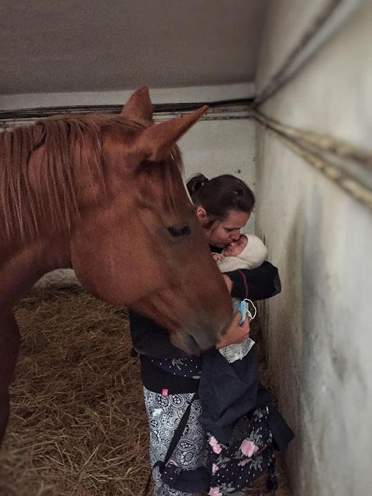 První setkání syna s milovaným koněm proběhlo hladce.