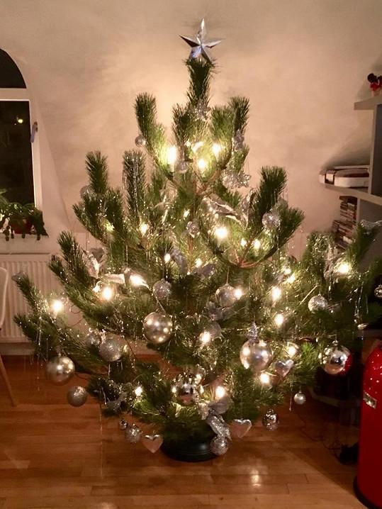 Monika Absolonová už má doma vánoční stromeček.