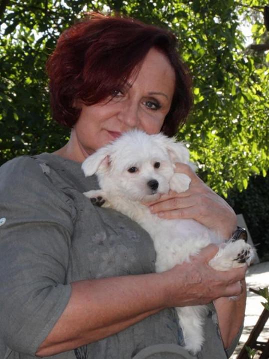 Radost jí dělá psí mazlíček Bob, který oslavil jeden rok.