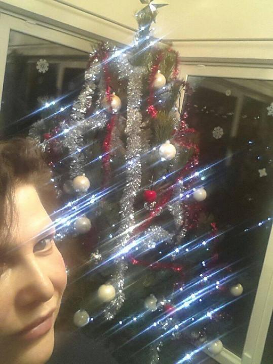 Pro vánoční stromek se chodí každý rok do lesa...