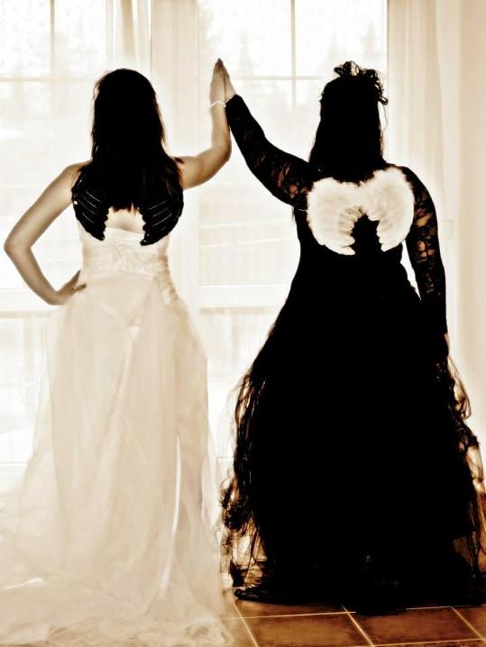 Sestry zezadu s křídly