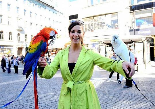 Marta Ondráčková odpoledne moderovala, ale nemohla si nechat ujít pomazlení s papoušky.
