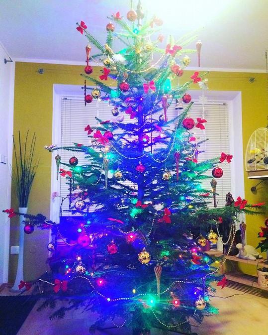Vánoční stromek u zpěvačky Kamily Nývltové