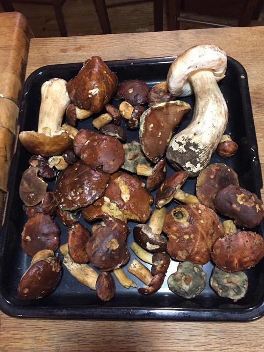 Také chodí na houby, tohle jsou její úlovky.