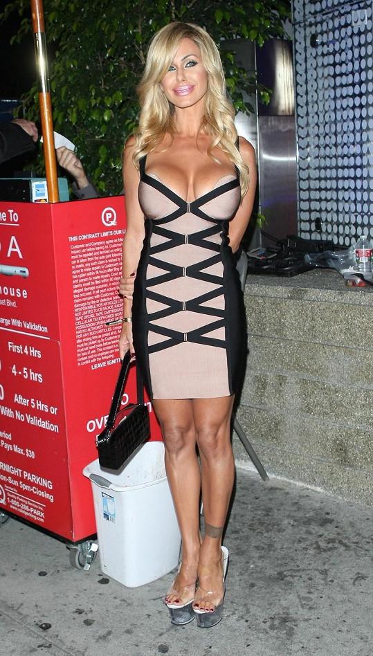 Shauna Sand - jedna z mnoha umělých hvězd světového šoubyznysu.