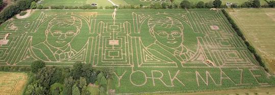 Výtvor farmáře Toma Pearcyho.