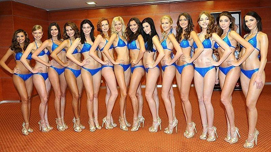Finalistky České Miss 2011