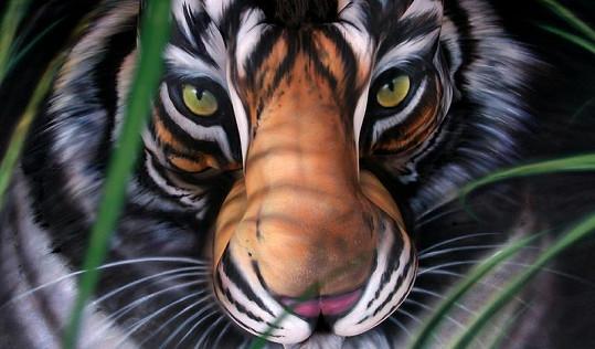Výsledek byl naprosto dokonalý, od fotografie skutečného tygra k nerozeznání.