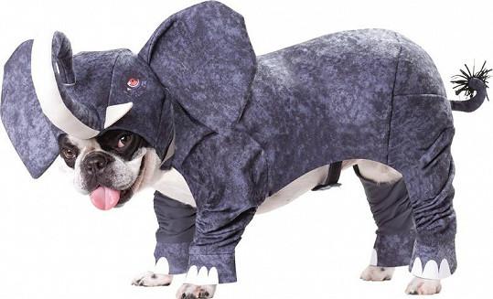 Kostým slona.